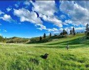 24435 Medicine Mountain Rd, Custer image