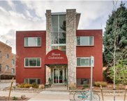 1131 North Lafayette Street Unit 101, Denver image