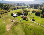 506 BUTTE HILL  RD, Woodland image