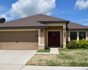 12276 Legacy Bright Street, Riverview image
