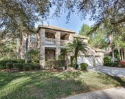 4814 Londonderry Drive, Tampa image