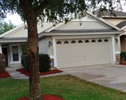 709 SKIPPING STONE WAY, Orange Park image