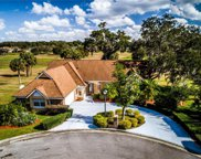 1010 Orange Grove Lane, Apopka image
