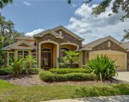 15741 Starling Water Drive, Lithia image