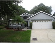 9108 Cliff Lake Lane, Tampa image