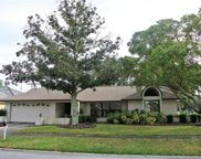 106 Tanglewood Court, Safety Harbor image