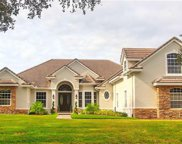 8549 Eagles Loop Circle, Windermere image