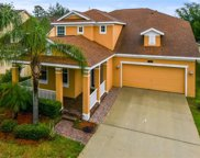 14357 Red Cardinal Court, Windermere image