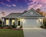 405 Black Cherry Way, Conway image