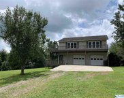13456 Grigsby Ferry Road, Elkmont image