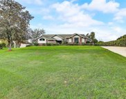 13307 Waterford Run Drive, Riverview image