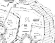 9061 Passiflora Ct (Lot 14036), College Grove image