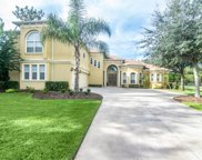 6217 Wild Orchid Drive, Lithia image
