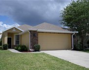 1025 Saint Ives Court, Mount Dora image
