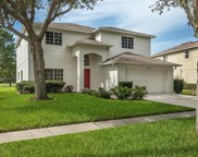 11002 Sailbrooke Drive, Riverview image