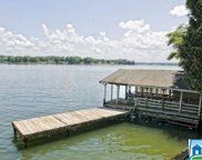 6600 Riviere Dr, Pell City image
