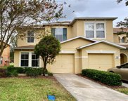 6952 Hawthorne Trace Lane, Riverview image