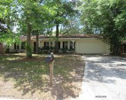 3636 RED OAK CIR W, Orange Park image