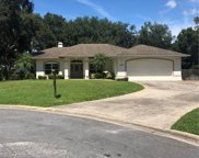 600 Brighton Place Boulevard, Kissimmee image