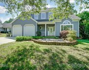 9113 Clifton Meadow  Drive, Matthews image