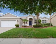 11812 Holly Creek Drive, Riverview image