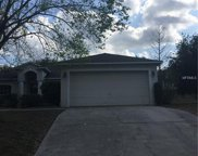 11611 Pineloch Loop, Clermont image