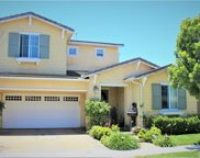 35     Water Lily, Irvine image
