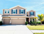 12314 Fairlawn Drive, Riverview image