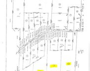 Lot 14 County Road 226, Niota image