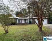 2716 Dellwood Dr, Pell City image