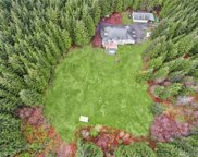 13031 Green Mountain Rd, Granite Falls image