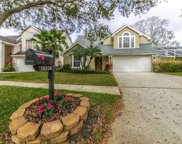 14534 Nettle Creek Road, Tampa image