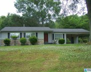 1104 Park Ave, Oneonta image