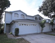 2972 Fieldbrook Place, Clearwater image