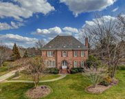 7102 Henson Farm Way, Summerfield image