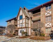 5646 W 103Rd Street Unit #307, Oak Lawn image