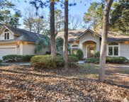 11 Brunson Court, Hilton Head Island image