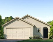 11890 Downy Birch Drive, Riverview image