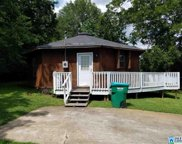 300 3rd Ave, Oneonta image