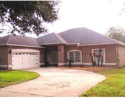 1250 Stoneywood Way, Apopka image