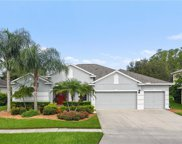 9732 Mountain Lake Drive, Orlando image