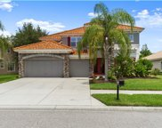 11317 Biddeford Place, New Port Richey image