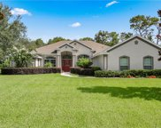 9550 Louisa Woods Court, Clermont image