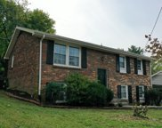 509 Holt Valley Rd, Nashville image