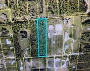 10574 Jolea Ave, Bonita Springs image