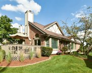 14730 Greenview Road, Orland Park image