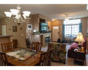 726 Tamarack Trail Unit #1207, Farmington image