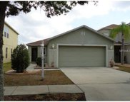 11013 Golden Silence Drive, Riverview image