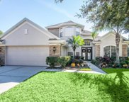 10134 Deercliff Drive, Tampa image