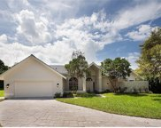 812 Willowwood Ln, Naples image